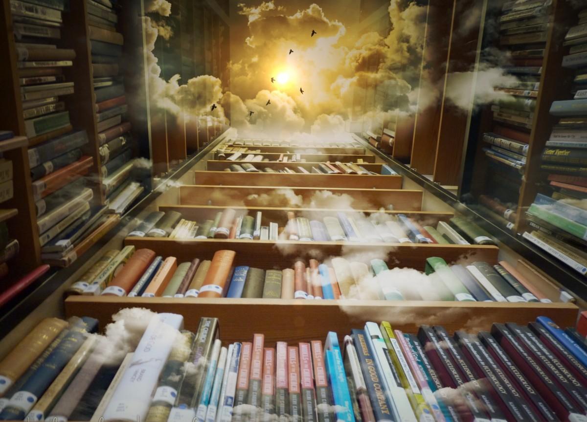 Arrangementer på biblioteket